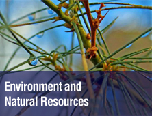 PDM Environment and Natural Resources - AbacusConsulting